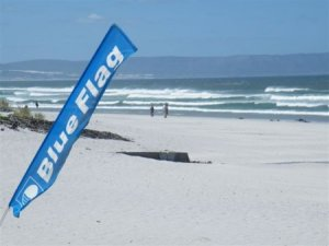 http://www.gotravel24.com/theme/beach-holidays/hermanus-beaches-alive-all-year-long